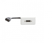 Uttagspanel - DisplayPort